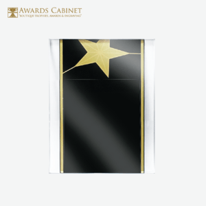 Awards Cabinet - Star Plaque Award